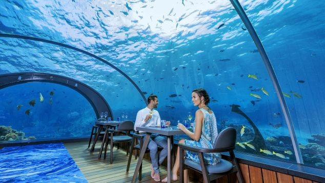 2. Dine with the fishes.jpg